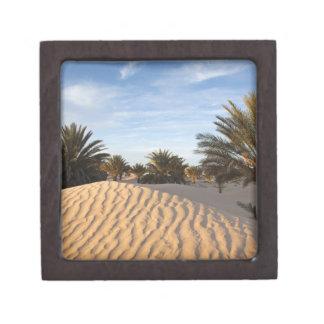 Tunisia, Sahara Desert, Douz, Great Dune, palm 2 Premium Gift Box