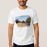 Tunisia, Sahara Desert, Douz, Great Dune, palm 2 Tee Shirt