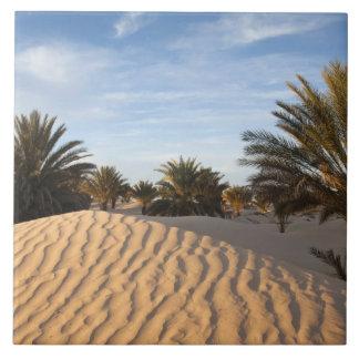 Tunisia, Sahara Desert, Douz, Great Dune, palm 2 Ceramic Tile