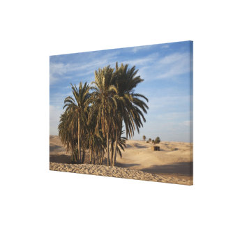 Tunisia, Sahara Desert, Douz, Great Dune, palm Canvas Print