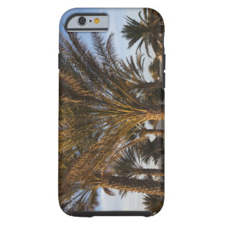 Tunisia Sahara Desert Douz Great Dune palm iPhone 6 Case