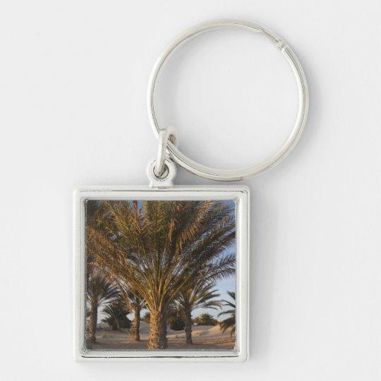 Tunisia, Sahara Desert, Douz, Great Dune, palm Keychain