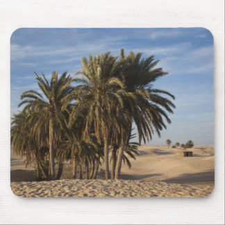 Tunisia, Sahara Desert, Douz, Great Dune, palm Mouse Pad