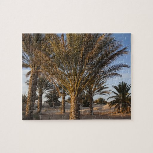 Tunisia, Sahara Desert, Douz, Great Dune, palm Puzzle