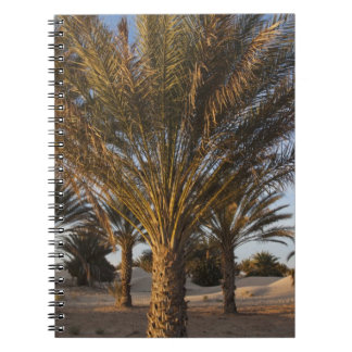 Tunisia, Sahara Desert, Douz, Great Dune, palm Spiral Notebook