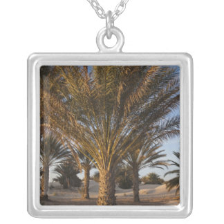 Tunisia, Sahara Desert, Douz, Great Dune, palm Square Pendant Necklace
