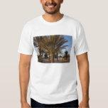 Tunisia, Sahara Desert, Douz, Great Dune, palm Tee Shirt