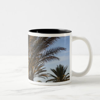 Tunisia, Sahara Desert, Douz, Great Dune, palm Two-Tone Coffee Mug