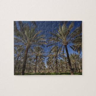 Tunisia, Sahara Desert, Douz, Zone Touristique, 2 Jigsaw Puzzle