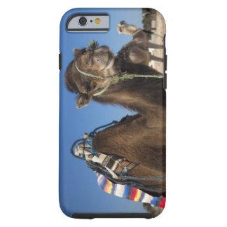 Tunisia Sahara Desert Douz Zone Touristique iPhone 6 Case