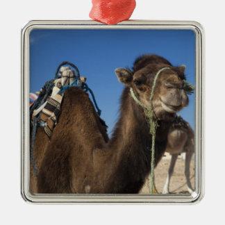 Tunisia, Sahara Desert, Douz, Zone Touristique, Metal Ornament