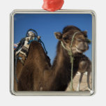 Tunisia, Sahara Desert, Douz, Zone Touristique, Square Metal Christmas Ornament
