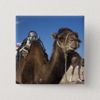 Tunisia, Sahara Desert, Douz, Zone Touristique, Pinback Button