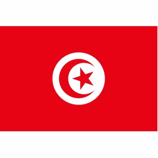Tunisia - Tunisian Flag Cut Outs