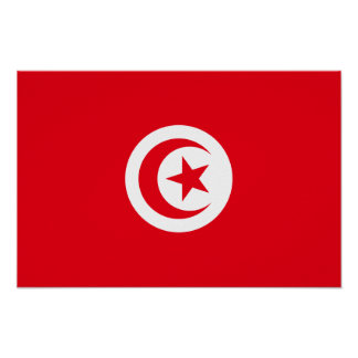 Tunisia - Tunisian Flag Poster