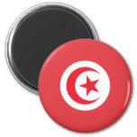 Tunisian Flag Fridge Magnets