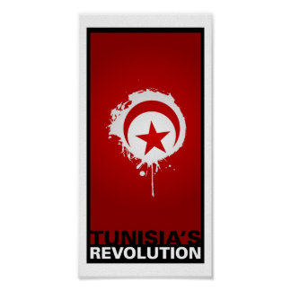 """""""Tunisia's Revolution"""" Poster"""