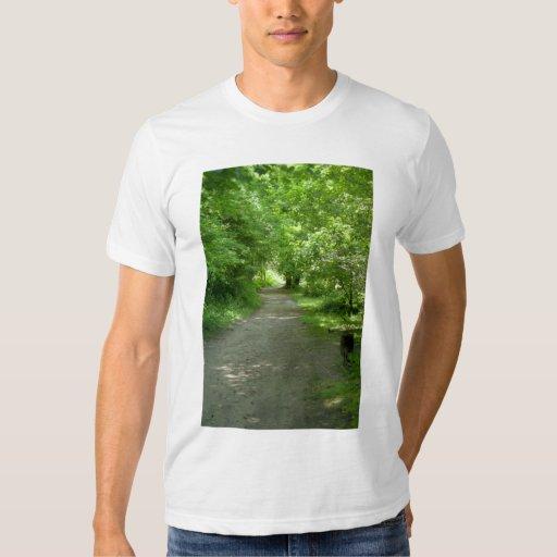 Tunnel of Leaves Men's T-Shirt