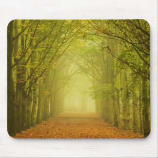 Tunnel of light in the forest mouse pad