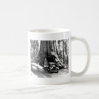 Tunnel Tree Classic White Coffee Mug