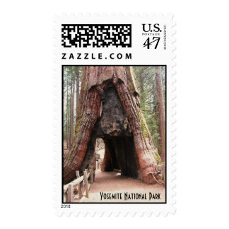 Tunnel Tree- Yosemite Postage