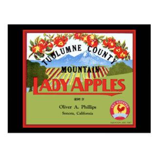 Tuolomne Lady Apple Label Postcard