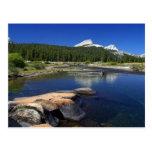 Tuolumne Meadows Yosemite Streams Postcard