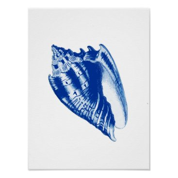 Beach Themed Turban Conch Shell, Indigo Blue and White Poster