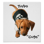 """Turbo """"Cute"""" poster by Tracey Smith Studios"""