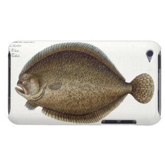 Turbot (Pleuronectes Maximus) plate XLIX from 'Ich iPod Touch Case
