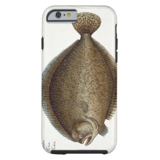 Turbot (Pleuronectes Maximus) plate XLIX from 'Ich Tough iPhone 6 Case