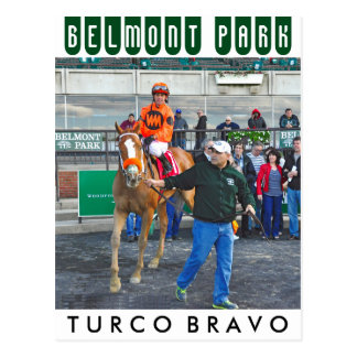 Turco Bravo & Javier Castellano Postcard