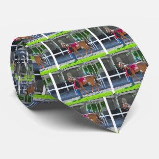 Turco Bravo Neck Tie
