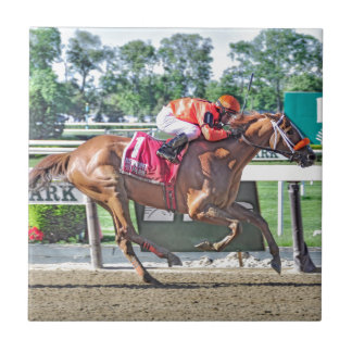 Turco Bravo wins the Flat Out Tile