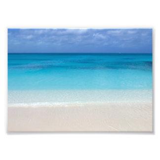 Turcos de la playa el   y foto de sotavento de cojinete