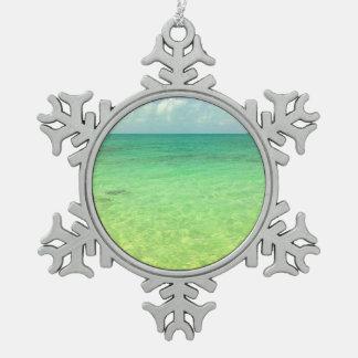 Turcos del océano el | de la aguamarina y foto adornos