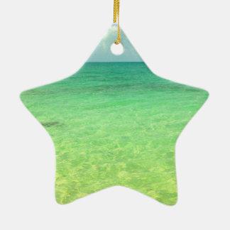 Turcos del océano el | de la aguamarina y foto ornamento para reyes magos