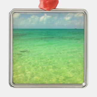 Turcos del océano el | de la aguamarina y foto adorno de navidad