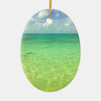 Turcos del océano el | de la aguamarina y foto adorno para reyes