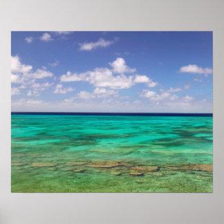 Turcos y Caicos isla magnífica del turco Cockbur Posters