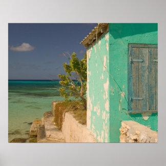 Turcos y Caicos, isla magnífica del turco, Cockbur Posters