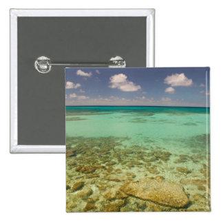 Turcos y Caicos, isla magnífica del turco, Cockbur Pin Cuadrado