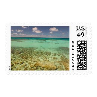 Turcos y Caicos, isla magnífica del turco, Sellos