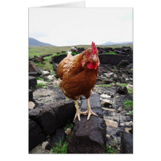 Turf chicken, Ireland Card