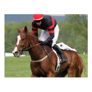 Turf Horse Race Postcard
