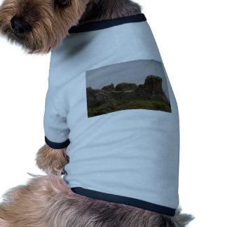 Turistas visibles en los restos estropeados del ca camiseta de mascota
