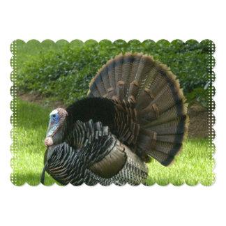 turkey-1.jpg card