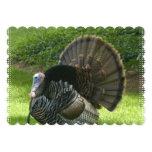 """turkey-1.jpg invitación 5"""" x 7"""""""