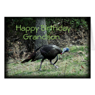 Turkey 6332-1  customize any occasion greeting card