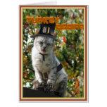 TURKEY AGAIN? Pilgrim Cat Greeting Card